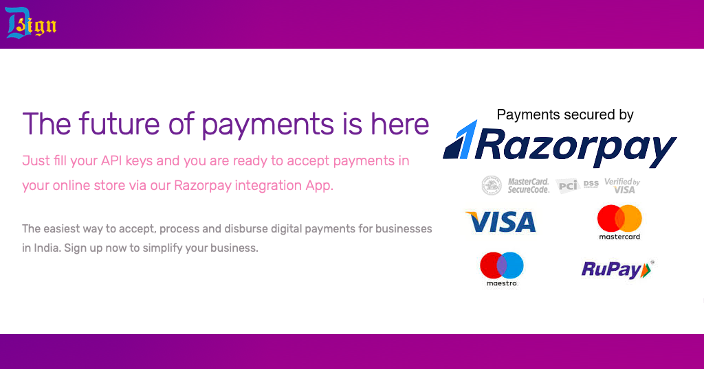 Razorpay: the Future of Payments